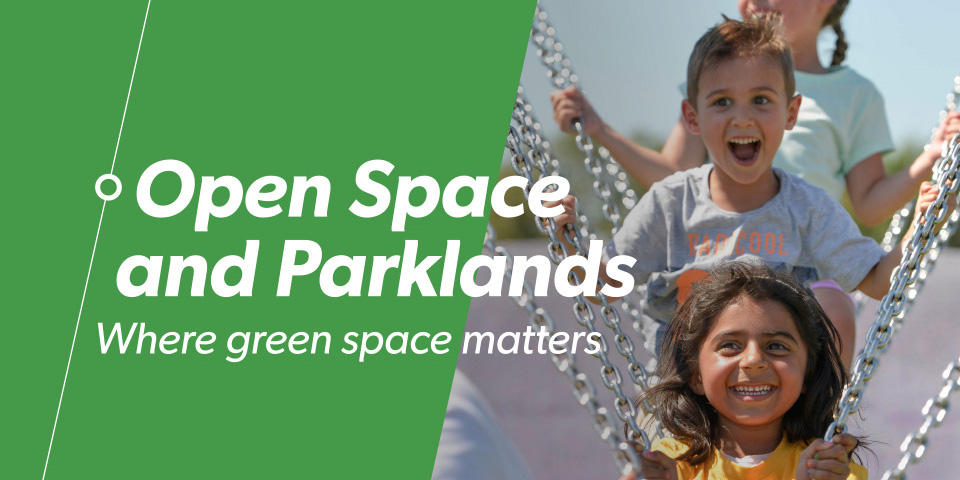 Open Space and Parklands