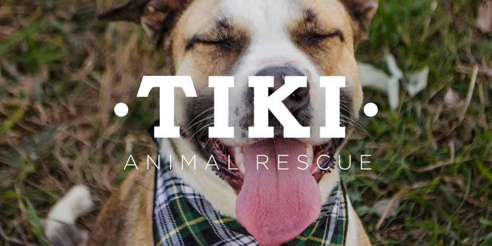 Tiki Animal Rescue